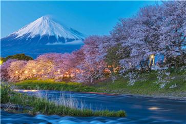 少儿日语课程怎么收费? 少儿日语多少钱?  第1张