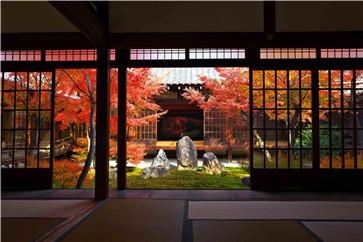 合肥哪里可以学日语-商品详情-多少费用 机构舆情 第1张