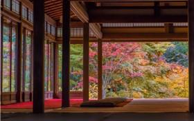 外教日语培训效果好吗?怎样选择培训机构?